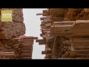 Досмотр лесоматериалов на Маньчжурской таможне