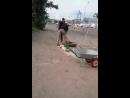 Заделывают яму цементом и узорной плиткой для тротуара