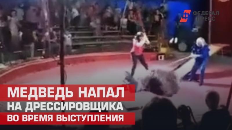 Медведь напал на дрессировщика