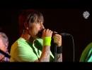 Red Hot Chili Peppers - Dani California ('18 Lollapalooza, Chile)