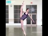 Crazy Flexible Girls