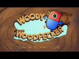Woody Woodpecker Reanimated - The Bird Who Came to Dinner (Brazilian Collab)