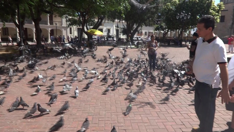 площадь в столице Санто Доминго, памятник Христофору Колумбу.