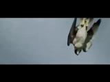 Чёрный ворон (Донецкий), ансамбль Казачий Круг, ДНР 2018