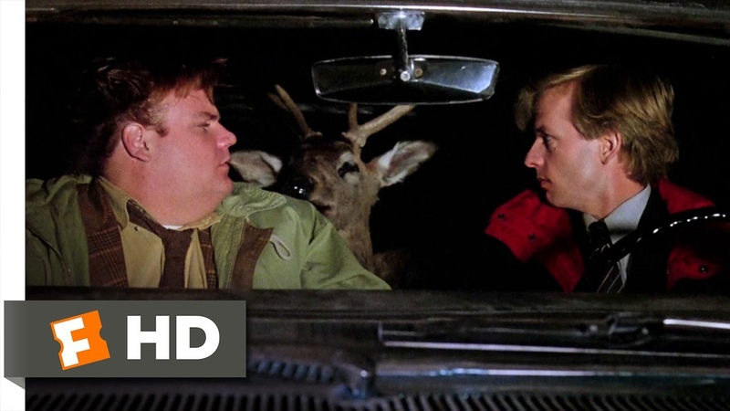 Tommy Boy 4 10 Movie CLIP The Deer Wakes Up 1995 HD