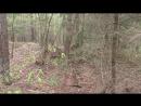 Сморгонь Лес 2 Блиндажи севернее разр бункера и бет блиндажей
