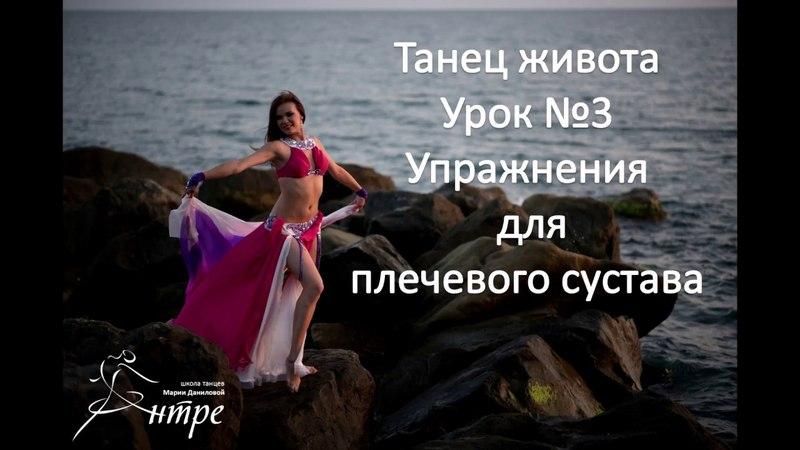 Танец живота упражнения для плечевого сустава онлайн урок №1