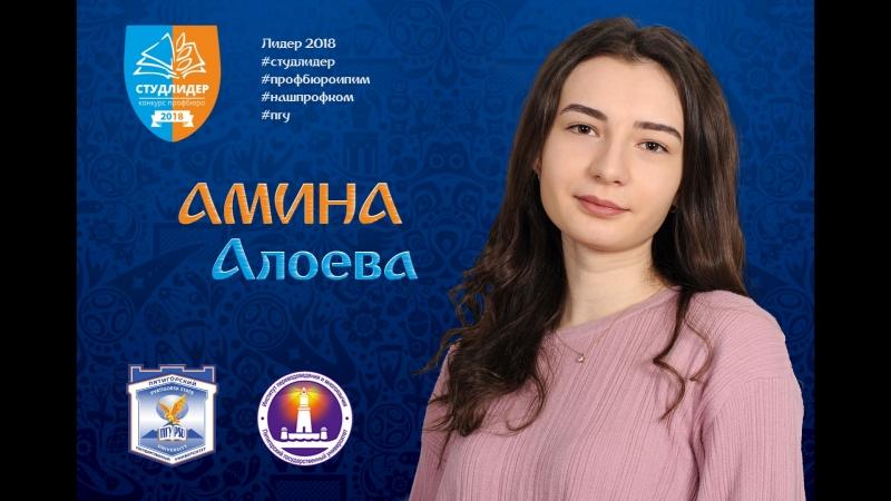 Амина Алоева. ИПИМ.2018