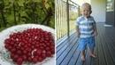 Что ест за день сын веган (10 мес) у свекрови в Швеции 👦 🍉
