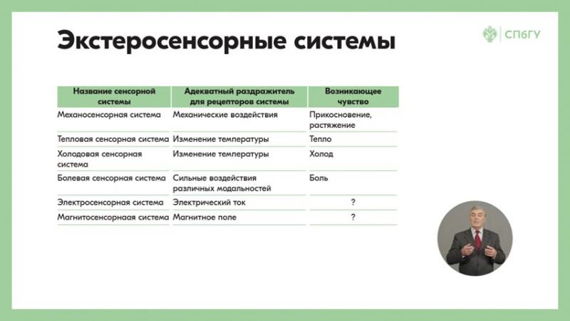 8.1 Основные механизмы функционирования периферического отдела сенсорных систем Что такое сенсорная система