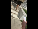 Говорят Хибины Апатиты - Кировск — Live