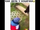 Video 74a3069ffd3c4616027935ac89a881f7