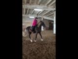 Ксения Голубкова на Памире, первая попытка поставить коня на свечку в крытом манеже КК