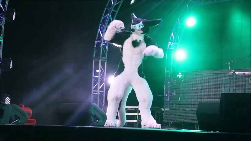 Rinn - BLFC 2018 Fursuit Dance Competition (1st Place)