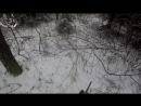 Охота 19 загонная на лося, поиски быка