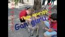 Ган Гуру парк австралийских животных/ Gan Guru is a park of Australian animals/ גן גורו