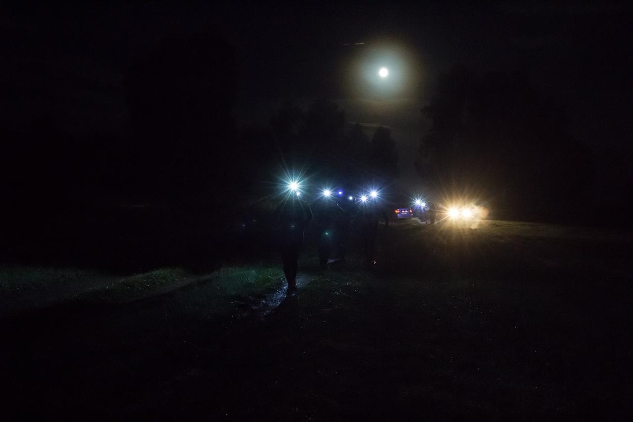 Ночь, поле, луна, мешки...