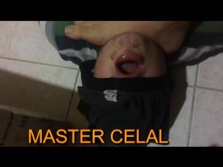 Maste Celal