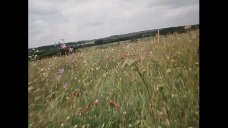 Песня о любви из к_ф Гардемарины, вперед! 1987 г
