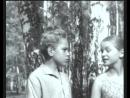 Братья Комаровы. Эпизод 3 (1961) СССР