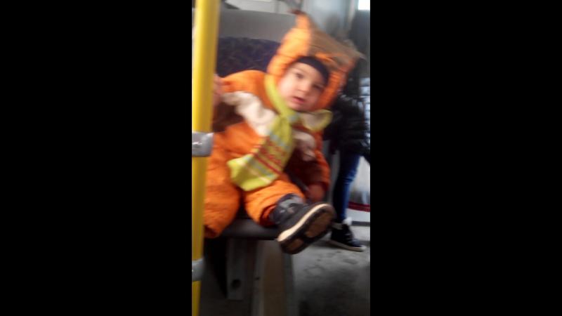 Роланд - Освоение автобуса (28.03.2016)