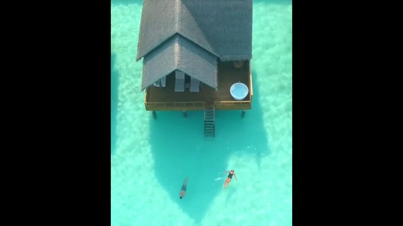 Tag_someone_you_want_to_take_into_this_Maldives_lagoon_🐠💦 ._➡️_Follow_@instatravelistz_ for_more_🌏 ._📽️_Video:_@lifes_lost_lugga
