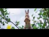 Марина Кравец и Кролик Питер уже #ВРодине