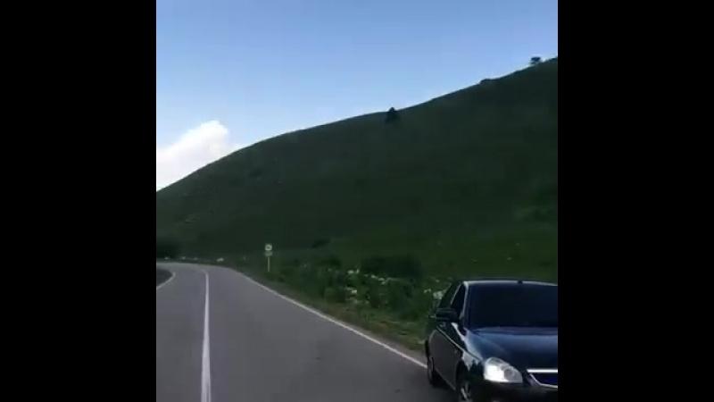 Махачкала Приора Стробоскопы