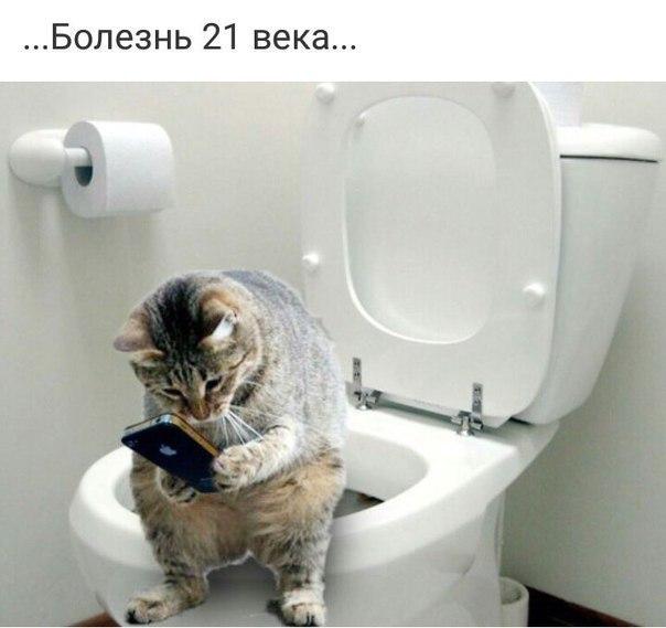 https://pp.userapi.com/c824700/v824700029/10d7ca/zlfB6OBpGvM.jpg