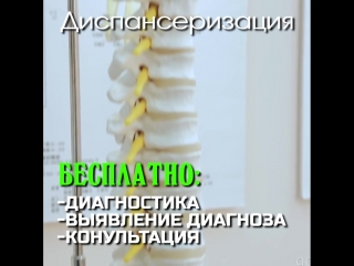 -dd-0802-spkf-01