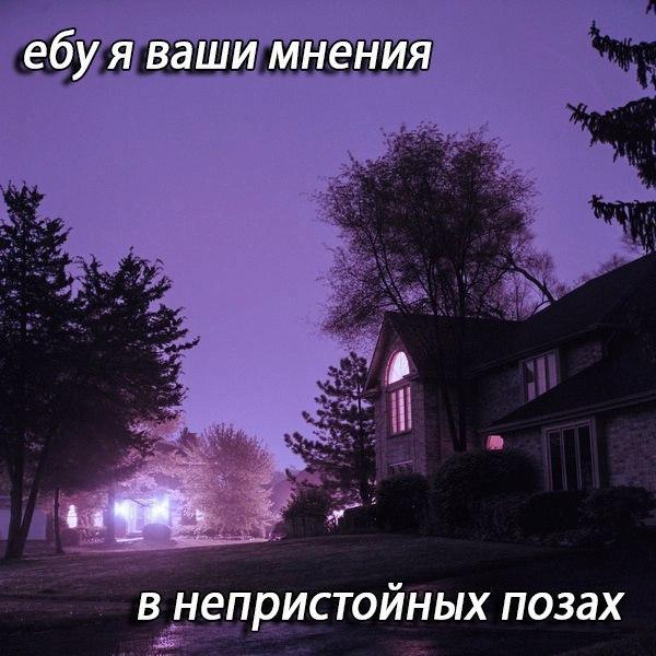 Анна Болдырева |
