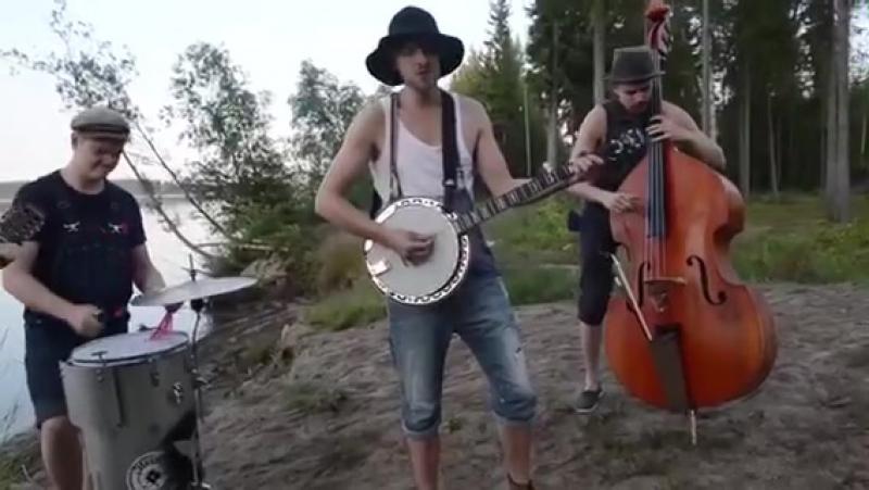 Steve 'n' Seagulls Band