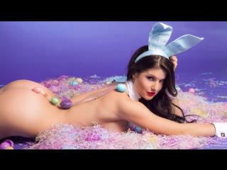 Amanda cerny - the naughty bunny nude playmate ( сексуальная, ню, модель, nude 18+ ) приватное
