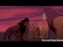 (король лев)отец и сын прикол (читайте описание).mp4
