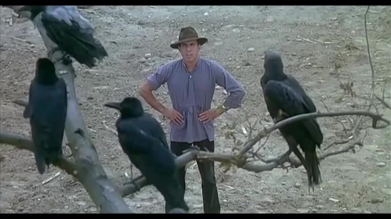 Адриано Челентано разговаривает с воронами. (Укрощение строптивого)