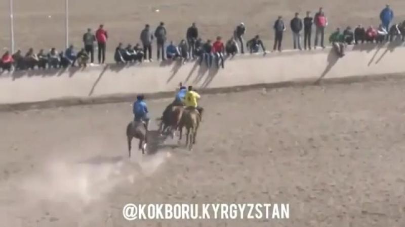 🔝▫ кокбору Кыргызстан Коргоочу ортодо да ойнойт кези келсе чабуулга ч