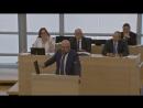 AfD Dr Hans Thomas Tillschneider Alles Rassisten außer Mutti