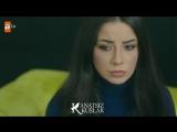 Зейнеп и Ахмет (Бескрылые птицы Kanatsız Kuşlar 42) #ZeyOn
