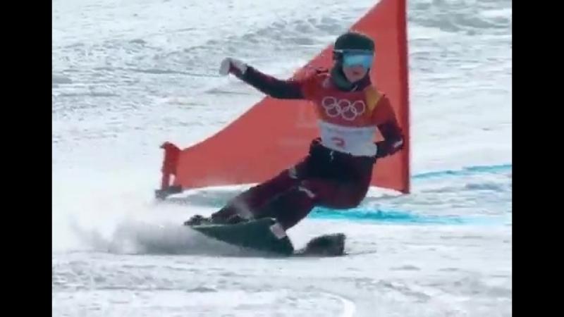 В Олимпийских играх в Пхёнчхане приняла участие белка