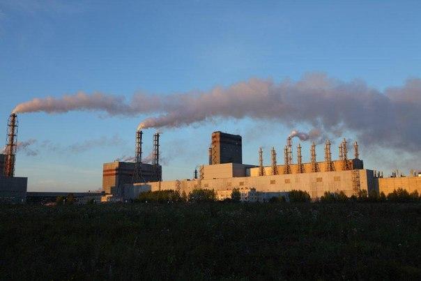 Экологиечские проекты Группы «Илим» в Усть-Илимске
