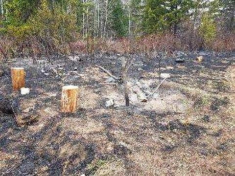Виновницу лесного пожара в Усть-Илимском районе оштрафовали на 5000 рублей