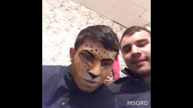Ёжик и приложение MSQRD