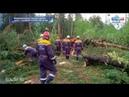 В Горном Алтае прошел ураган