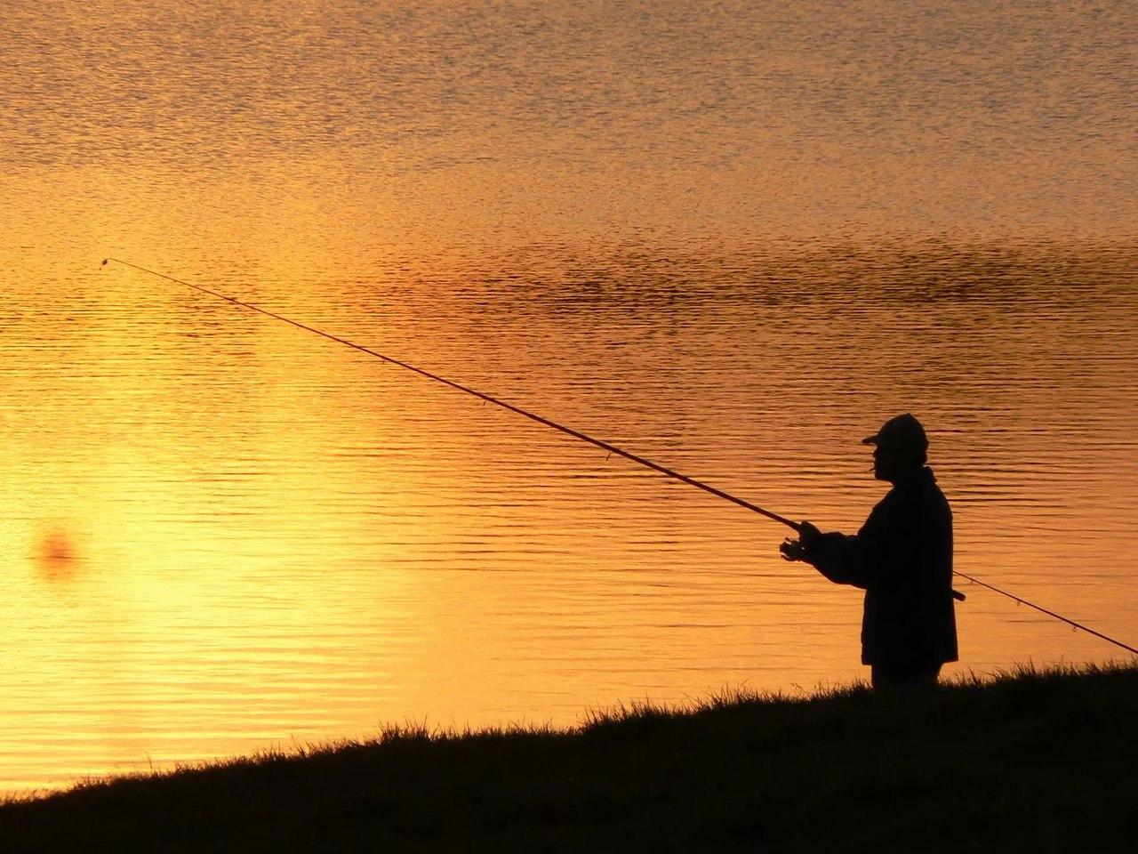 «Аппетит» рыболовов-любителей в Марий Эл ограничат
