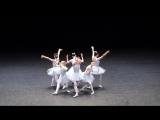 Это самый смешной балет, который я видел в жизни!