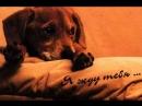 гр Вк ***Любовь и БОЛЬ*** В Асмолов Я рядом быть с тобой хочу
