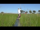 Botswana Okavango Delta Chobe River in 4K Ultra HD spian scscscrp