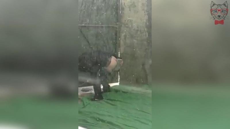 Когда Закончилась Туалетная Бумага
