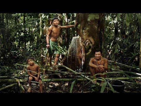 ПИРАХА Племя котороенеспит