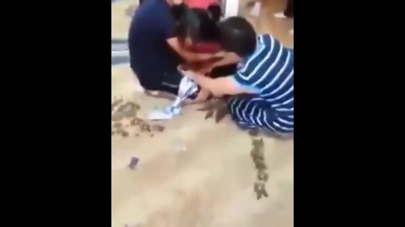 Алып қашу құрбаны болған қыз көз жасымен жұрттың жүрегін елжіретті (видео)